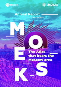 "Annual Report ""MOESK 2017"""